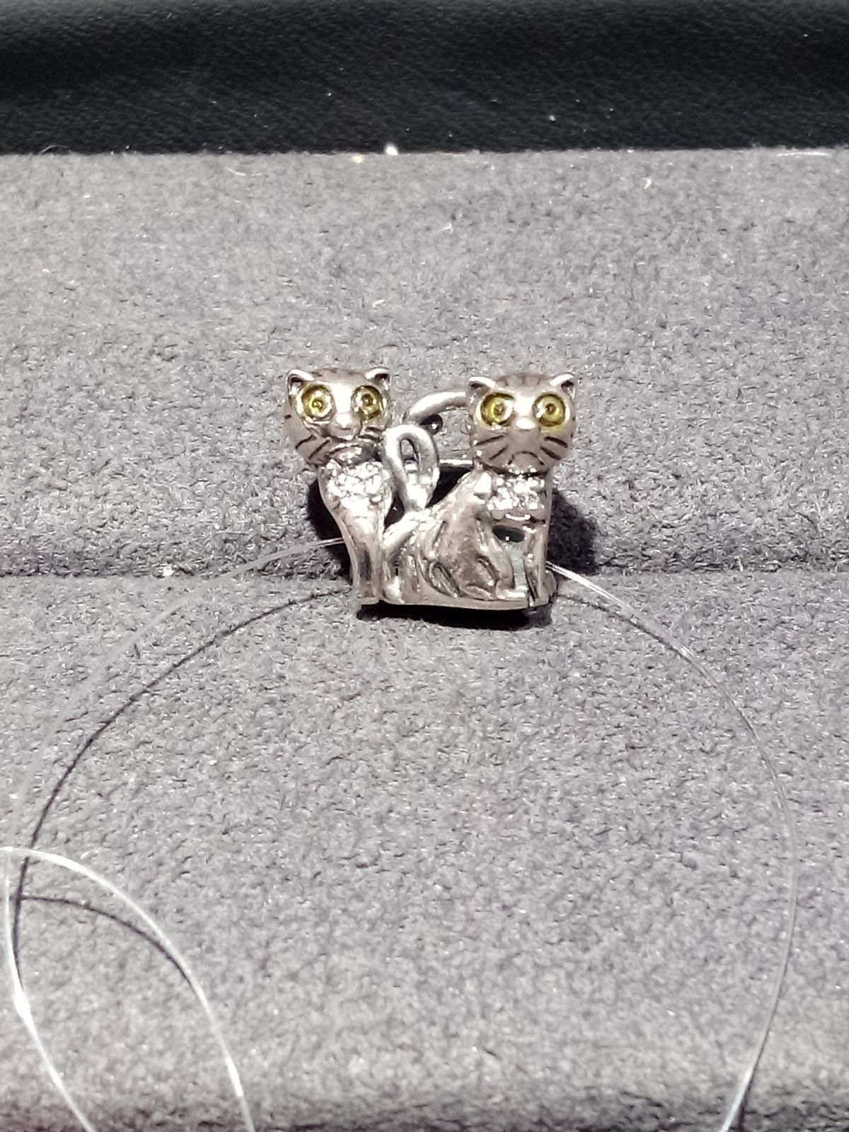Котики милашки.