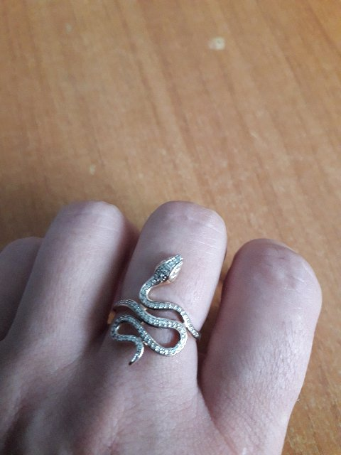 Моя змейка