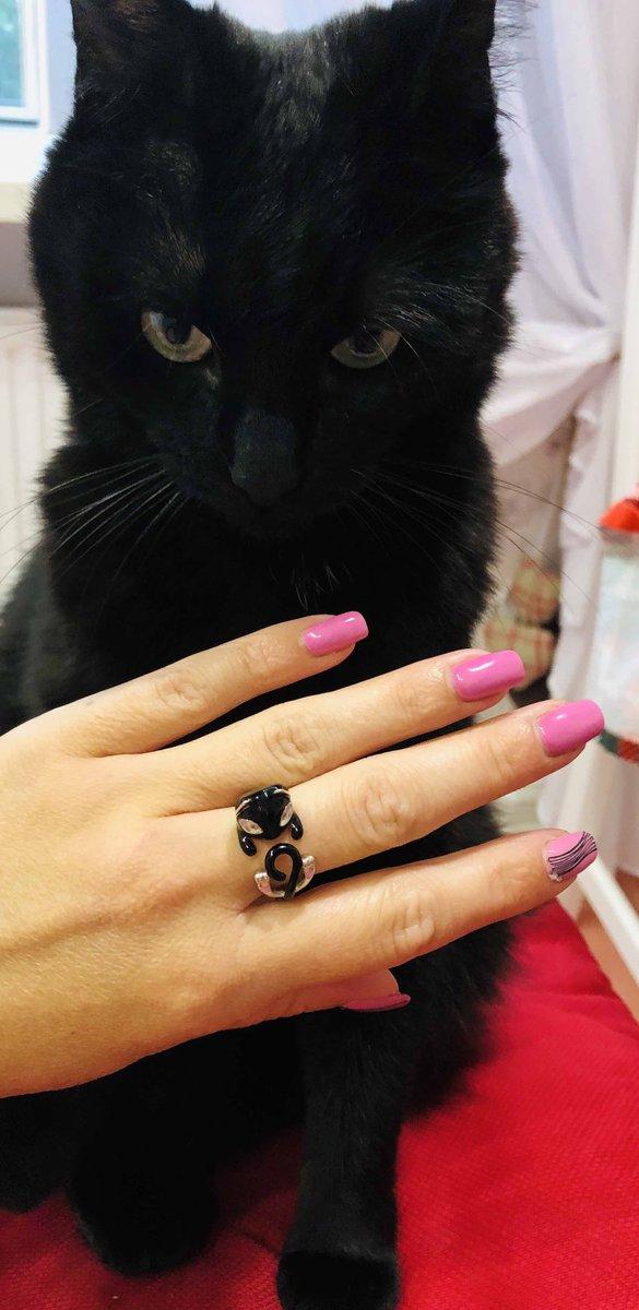 Серебрянное кольцо кошка
