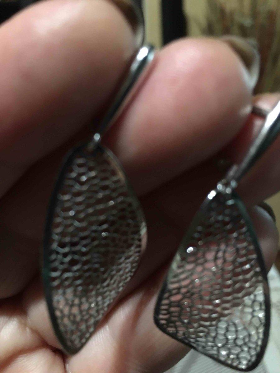 Серебряные крылышки