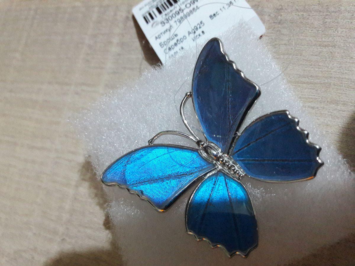 Брошка бабочка.