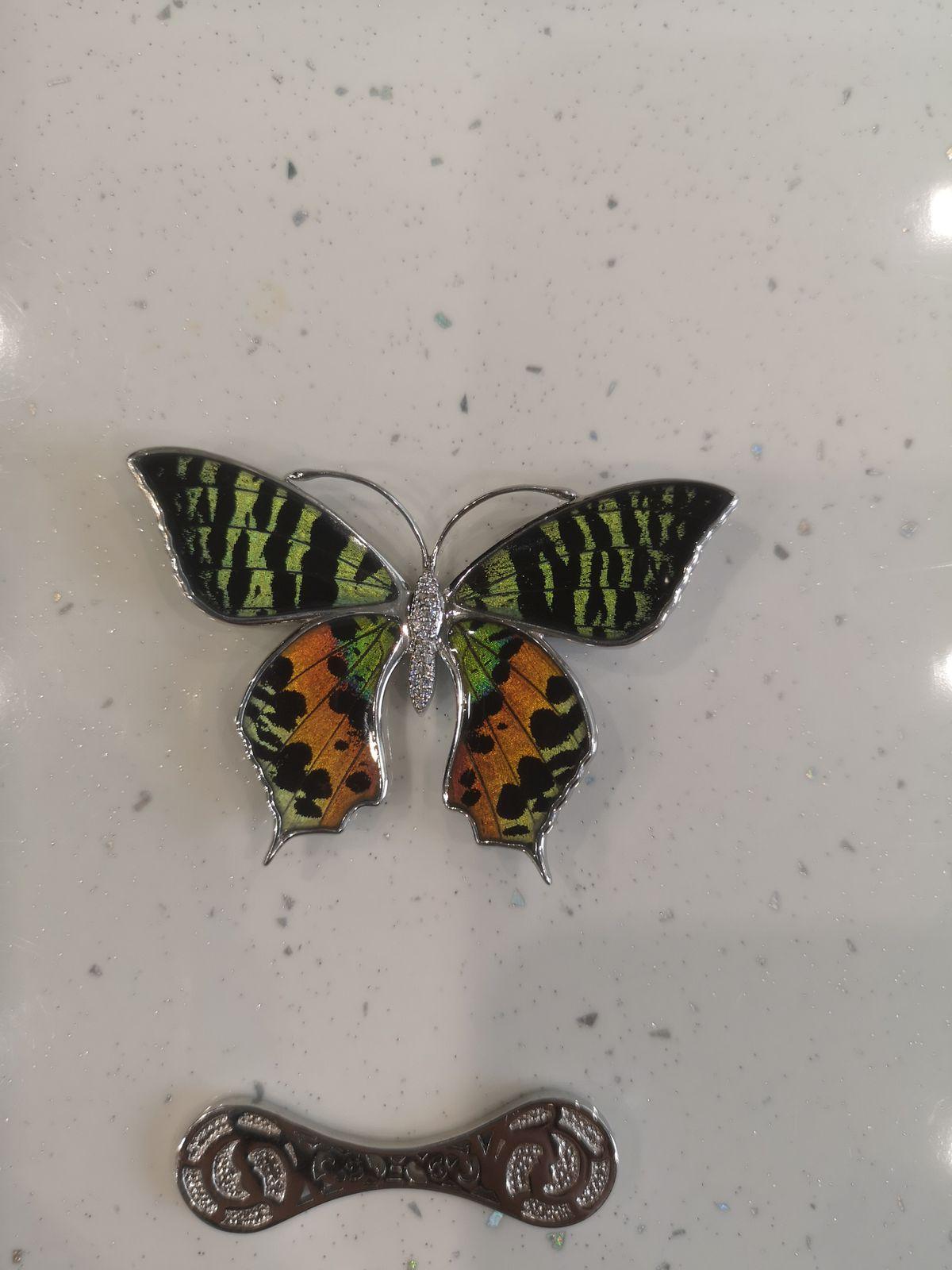 Нереально красивая бабочка махаон